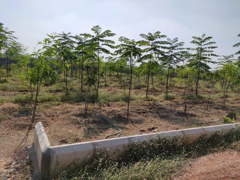 Gagillapur Land (2)