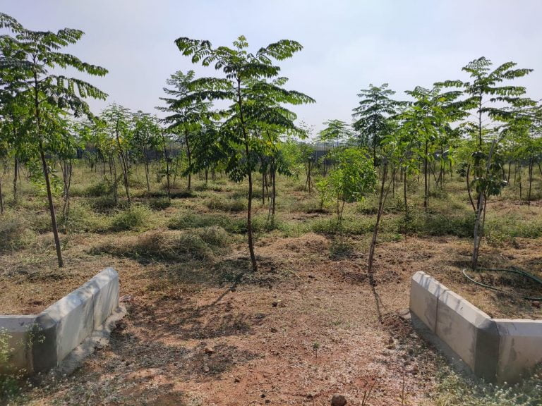 Gagillapur Land (3)