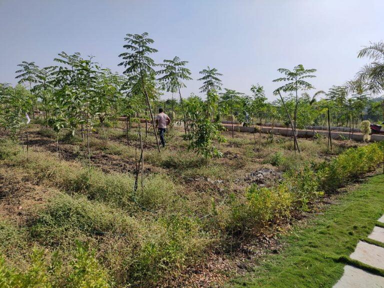 Gagillapur Land (4)