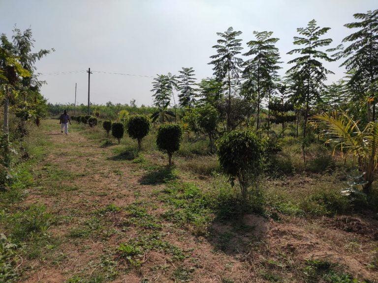 Gagillapur Land (7)