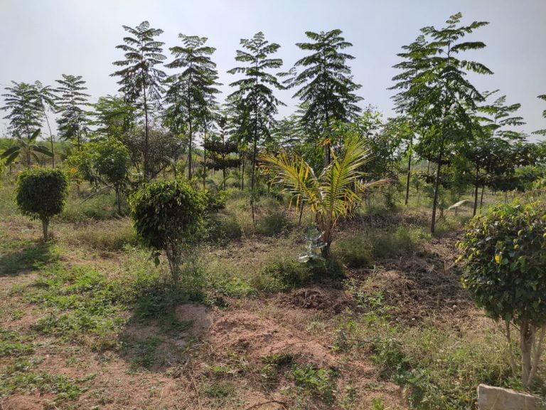 Gagillapur Land (8)